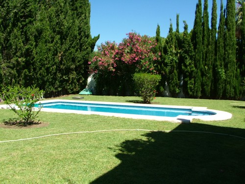 garden, pool, private swimming pool